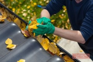 Do Your Annual Gutter Cleaning!